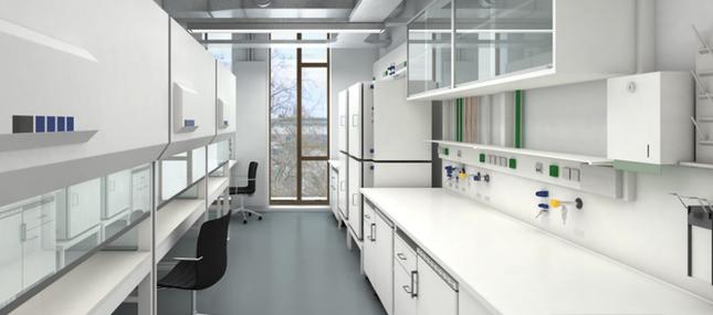 MFL - Molekulares Forschungslabor