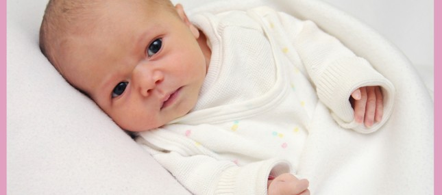 Amalia Sophie