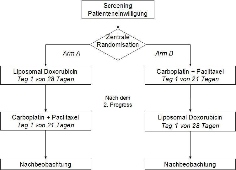 Screening_Patienteneinwilligung