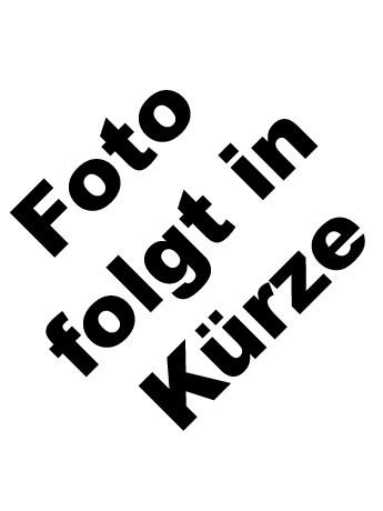 2013_Z_Foto_Folgt.jpg