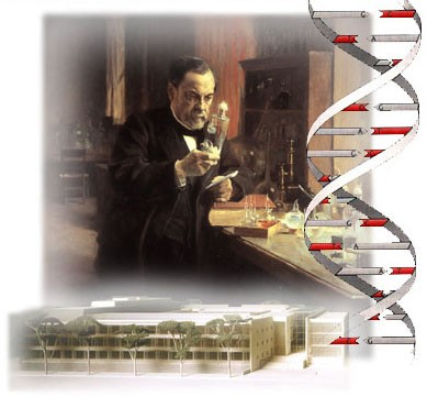 bild-Pasteur.jpg