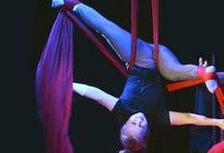 Das Zirkusprojekt