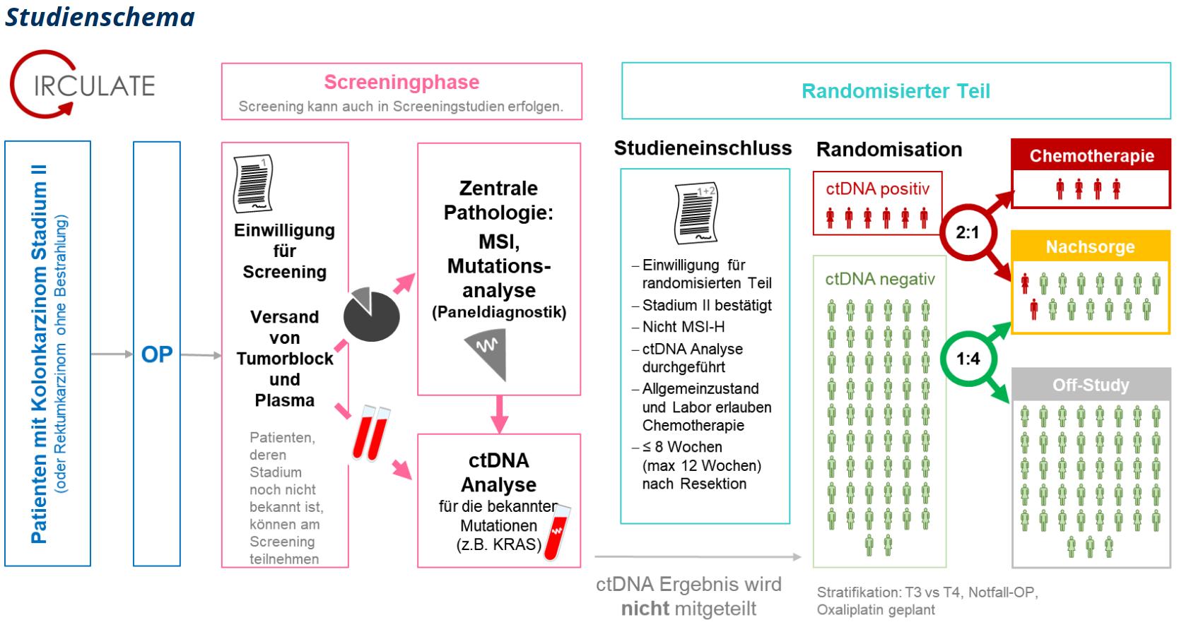 StudienschemaSynopseV3_neu.PNG