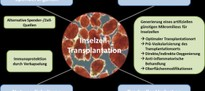 Aktuelle Limitationen und Herausforderung der Inselzelltransplantation und Perspektiven.jpg