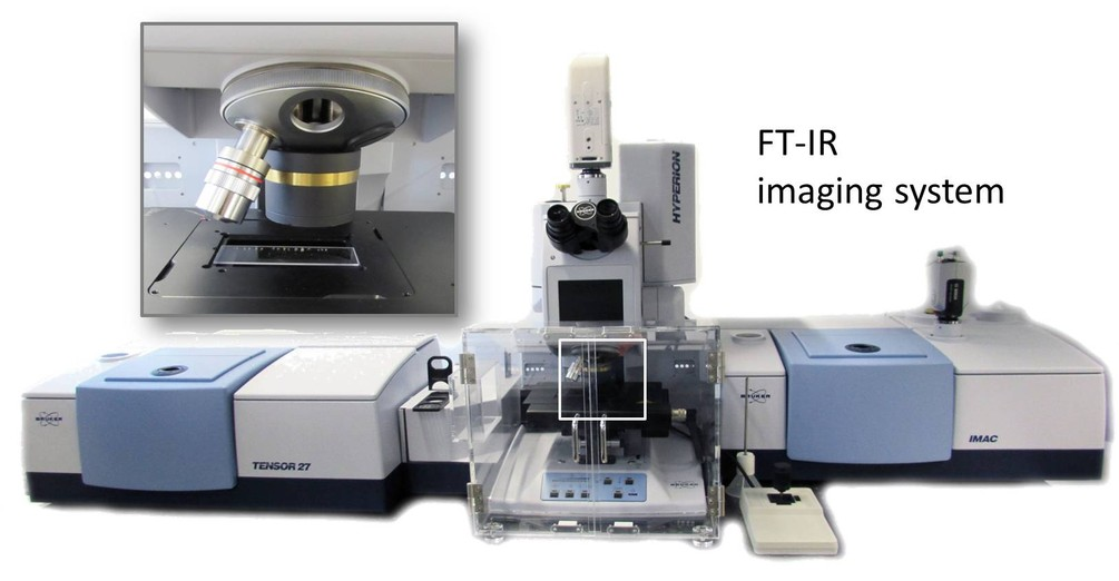 FT-IR imaging