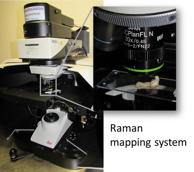 Raman mapping