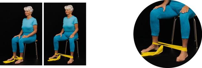 Grundprogramm HTEP: Kräftigung der kleinen Gesäßmuskeln