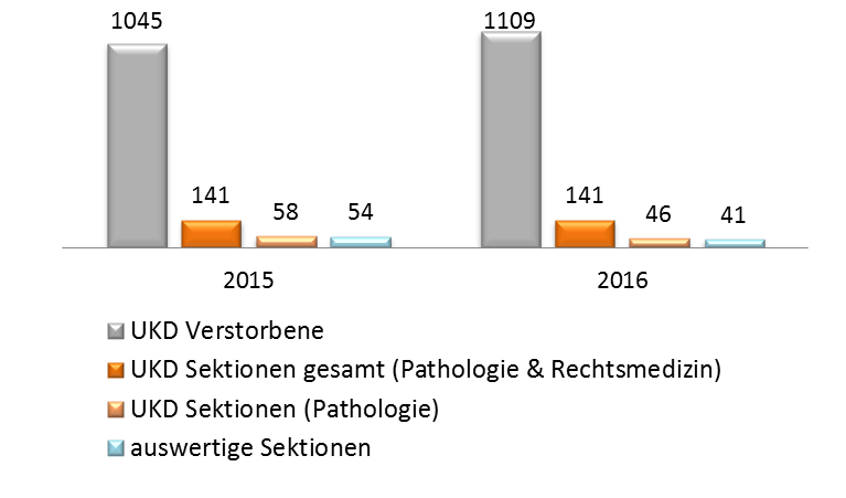 Abb_UKD-Zahlen_Sektion2.png