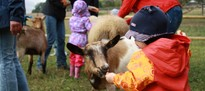 Therapietag auf dem Bauernhof - 2013