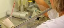 Forschung im Strahlenbiologischen Labor