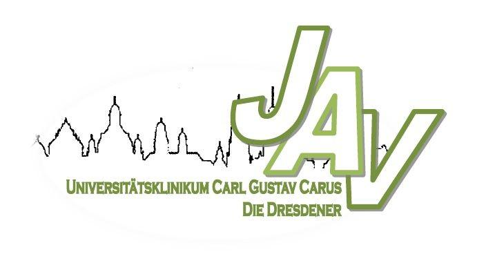 JAV Logo
