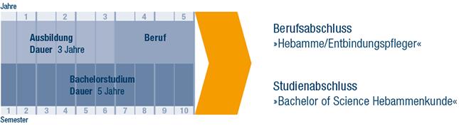 schema-studium-bachelor-hebamme-entbindungspfleger.png