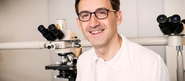 Neuer Enzym-Hemmer verbessert AML-Therapie