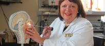 25 Jahre Akupunktur-Therapie für Allergiker: Dresdner Verfahren ist heute wissenschaftlich anerkannt